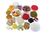 MyPlate Food Model Kit