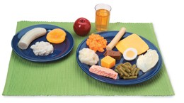 Bariatric Food Models Kit
