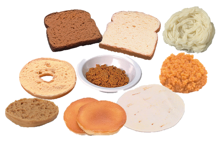 Grains Foods Model Kit
