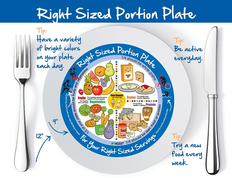 Nces Kids Right Size Portion Plate Tear Pad