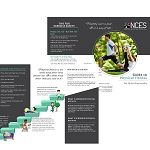 The Guide to Physical Fitness