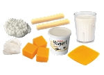 Dairy Foods Model Kit